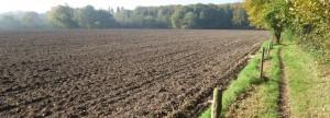 Lezing Het Smalle Pad: dhr  Frans Keurentjes, onderwerp: En de boer, hij ploegde voort! @ Johanneskerk | Diepenheim | Overijssel | Nederland